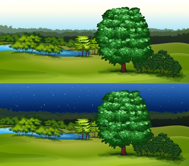 Campo verde no dia e noite