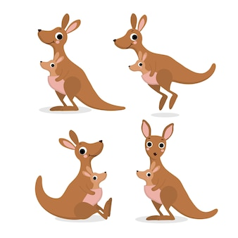 Canguru bonito e bebê, coleção de joey. animal da austrália