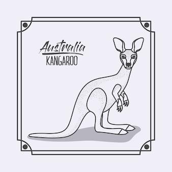 Canguru da austrália em moldura e silhueta monocromática