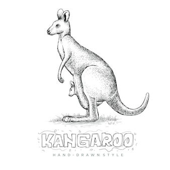 Canguru segurando seu filho, uma ilustração de um animal de mão desenhada