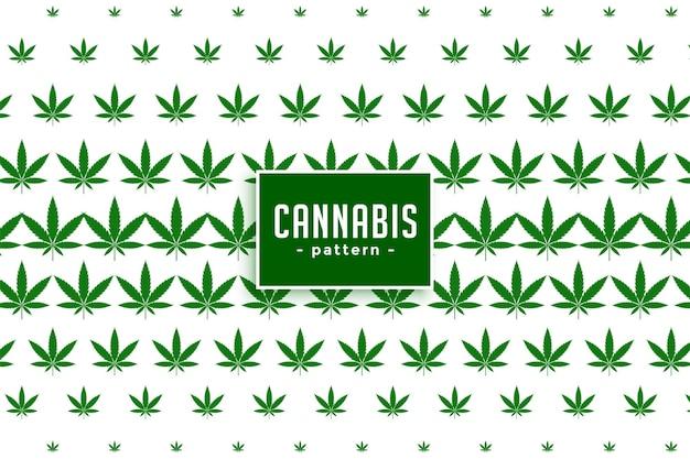 Cannabis maconha folhas de fundo
