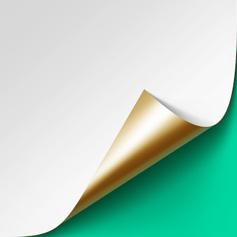 Canto dourado enrolado de papel branco com sombra
