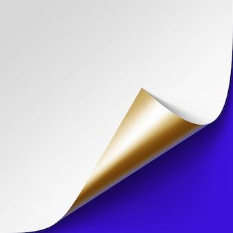 Canto dourado metálico enrolado do livro branco