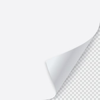 Canto enrolado de papel com sombra