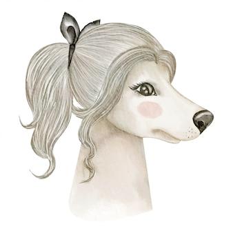 Cão afegão bonito cão com fita encaracolado de cabelo