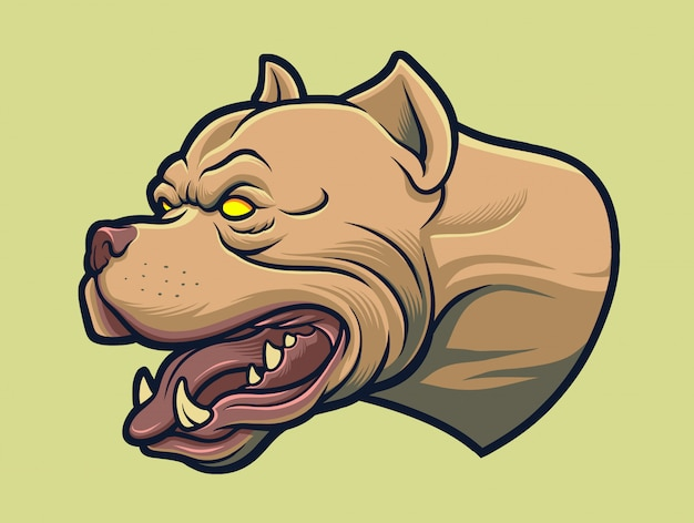 Cão americano pitbull agressivo