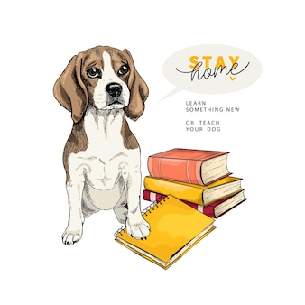 Cão beaglel desenhado de mão se senta com um livro e um caderno.