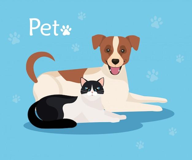 Cão bonito com gato no fundo azul com pawprints