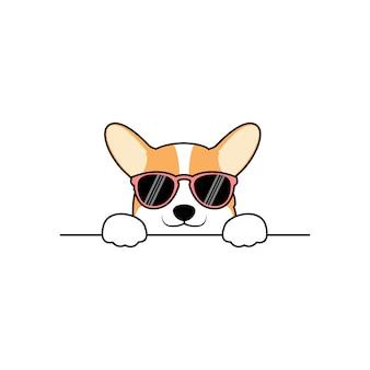 Cão bonito corgi com óculos de sol a espreitar