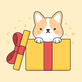 Cão bonito corgi em uma caixa de presente