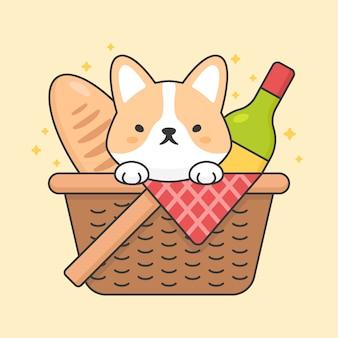 Cão bonito corgi em uma cesta de piquenique