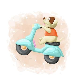 Cão bonito dos desenhos animados passeio scooter ilustração vector