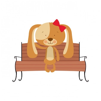 Cão bonito sentado na cadeira do parque