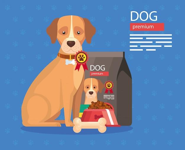 Cão com comida premium e osso