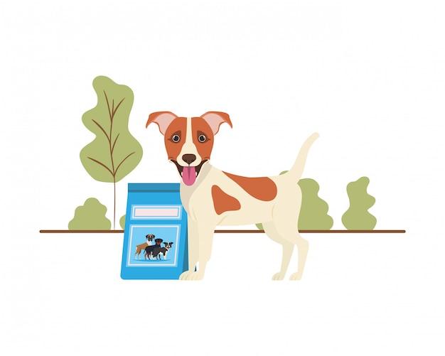 Cão com saco de comida de cachorro na paisagem