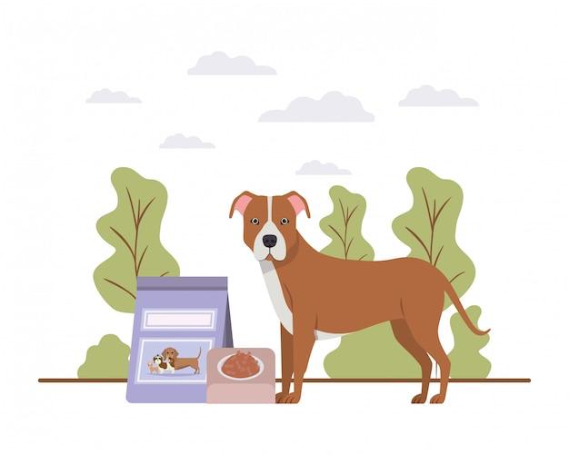 Cão com tigela e alimentos para animais na paisagem