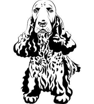 Cão de caça com desenho preto e branco cocker spaniels inglês sentado