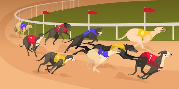 Cão de corrida de diferentes raças em vestido de corrida. conceito de corrida de cães.