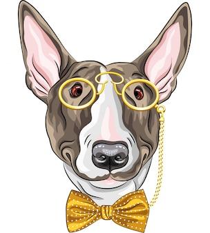 Cão de hipster engraçado dos desenhos animados de vetor bullterrier