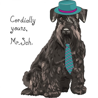 Cão de hipster engraçado dos desenhos animados vetor schnauzer