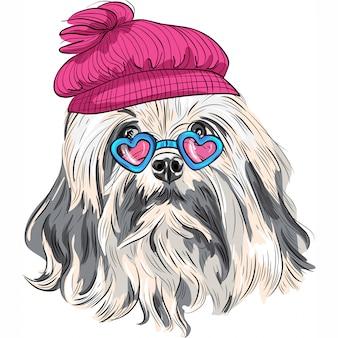 Cão de lowchen de hipster engraçado dos desenhos animados de vetor
