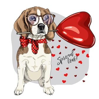 Cão de vetor. cartão de dia dos namorados.