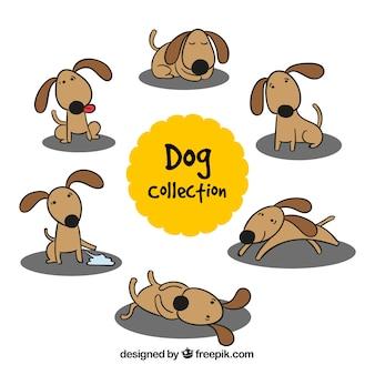 Cão desenhado mão em diferentes posturas
