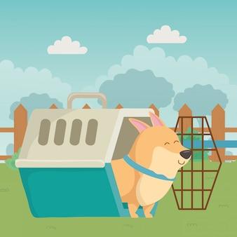 Cão dos desenhos animados dentro do canil