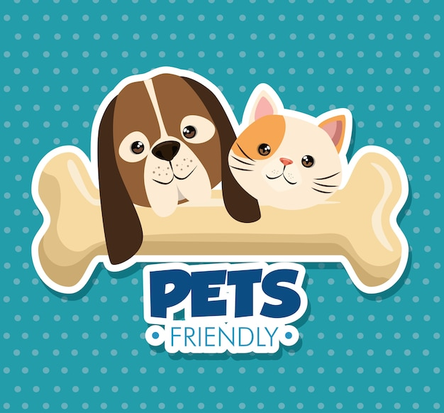 Cão e gato com mascotes bonitos de osso