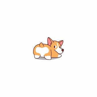 Cão engraçado do corgi de galês que olha para trás