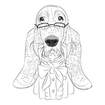 Cão engraçado dos desenhos animados hipster basset hound