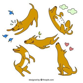 Cão esboçado