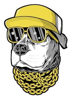 Cão hip hop