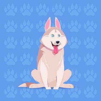Cão husky feliz dos desenhos animados sentado sobre pegadas fundo bonito animal de estimação