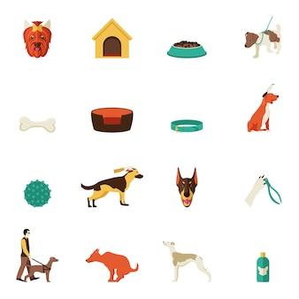 Cão, ícones, apartamento
