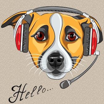 Cão jack russell terrier, operador de call center com telefone