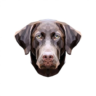 Cão low poly. laboratório chocolate