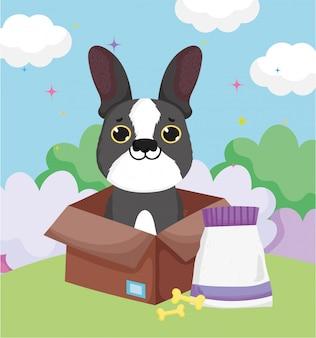 Cão pequeno na caixa com ossos e alimentos animais de estimação