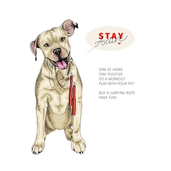 Cão pit bull desenhado de mão senta-se com uma corda de pular. fique em casa.