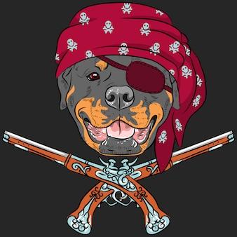 Cão rottweiler pirata com pistolas