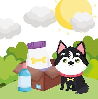Cão sentado com comida na caixa de animais de estimação ao ar livre