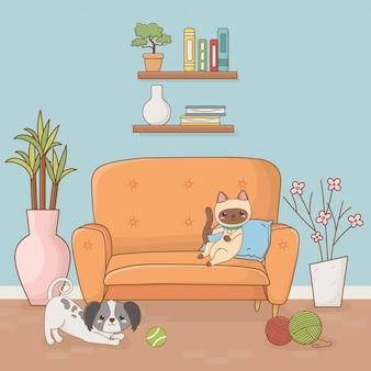 Cãozinho e gato mascotes no quarto da casa