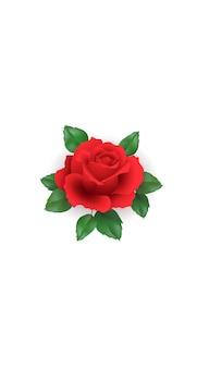 Capa de mídia social 3d realista de flor rosa romântica