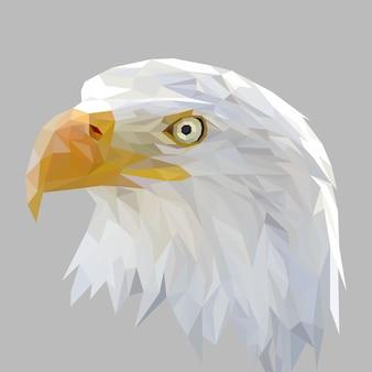 Cara de águia com desenho de geometria