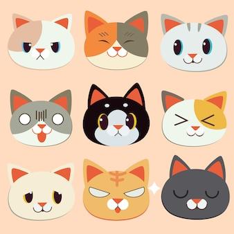 Cara de emoção de gato