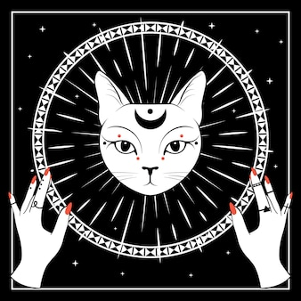 Cara de gato branco com a lua no céu noturno