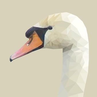 Cara de pato com desenho de geometria