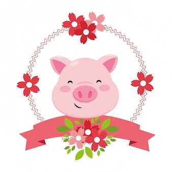 Cara de porco só
