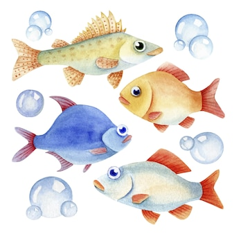Caractere de peixe aquarela e bolhas no fundo branco