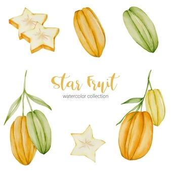 Carambola, fruta madura amarela em aquarela coleção com verde e folha com ramo